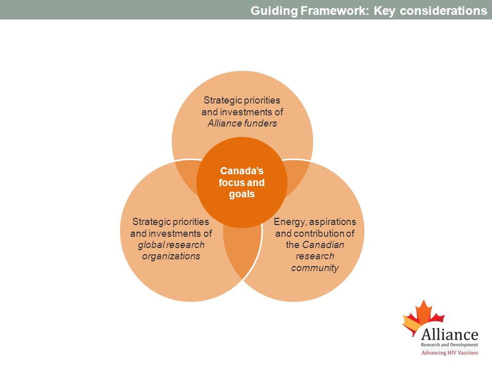 Guiding Framework: Key considerations Strategic priorities and investments of Alliance funders Strategic priorities and investments of global research organizations Energy, aspirations and contribution of the Canadian research community Canadas focus and goals