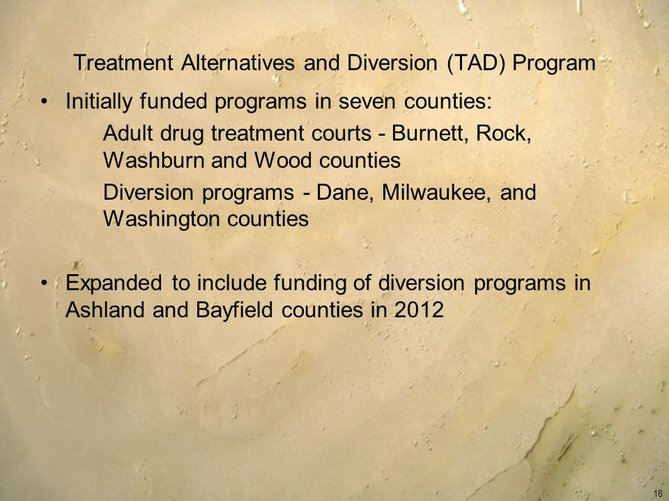 Treatment Alternatives and Diversion (TAD) Program Initially funded programs in seven counties: Adult drug treatment courts - Burnett, Rock, Washburn and Wood counties Diversion programs - Dane, Milwaukee, and Washington counties Expanded to include funding of diversion programs in Ashland and Bayfield counties in 2012 18