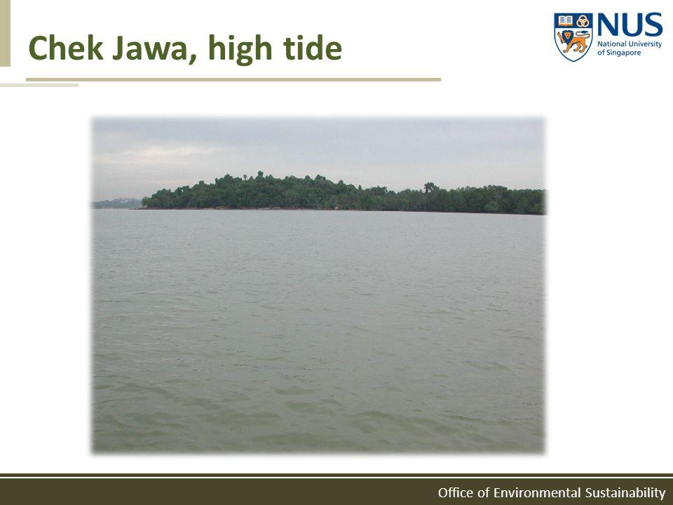 Office of Environmental Sustainability Chek Jawa, high tide