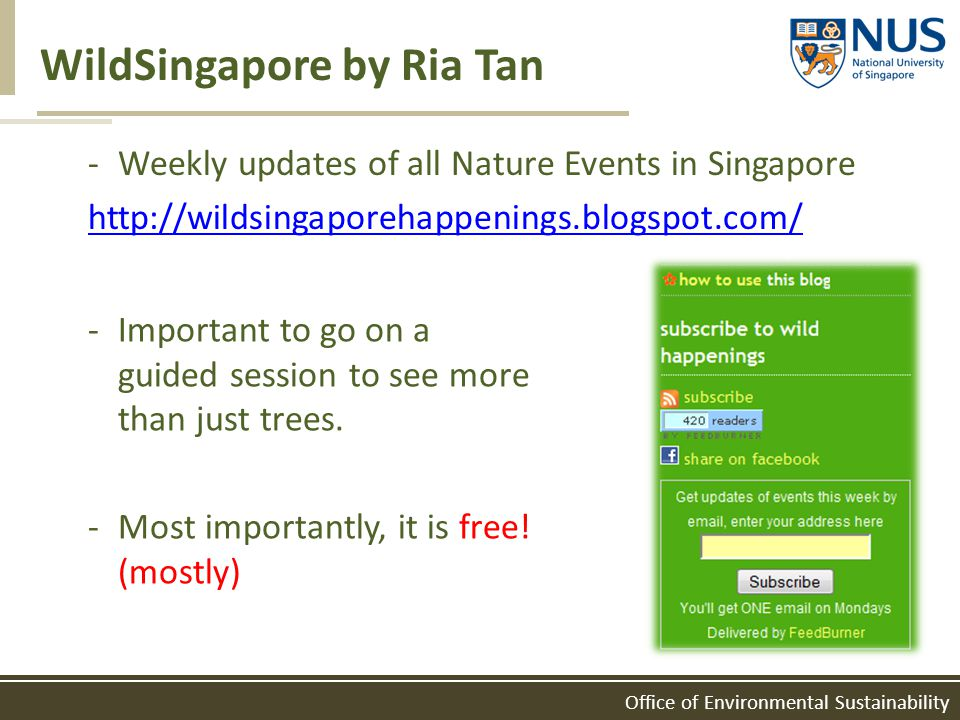 WildSingapore by Ria Tan -Weekly updates of all Nature Events in Singapore http://wildsingaporehappenings.blogspot.com/ -Important to go on a guided s