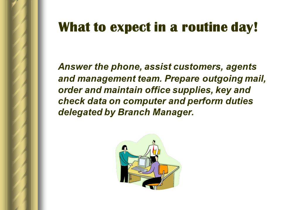 What to expect in a routine day. Answer the phone, assist customers, agents and management team.