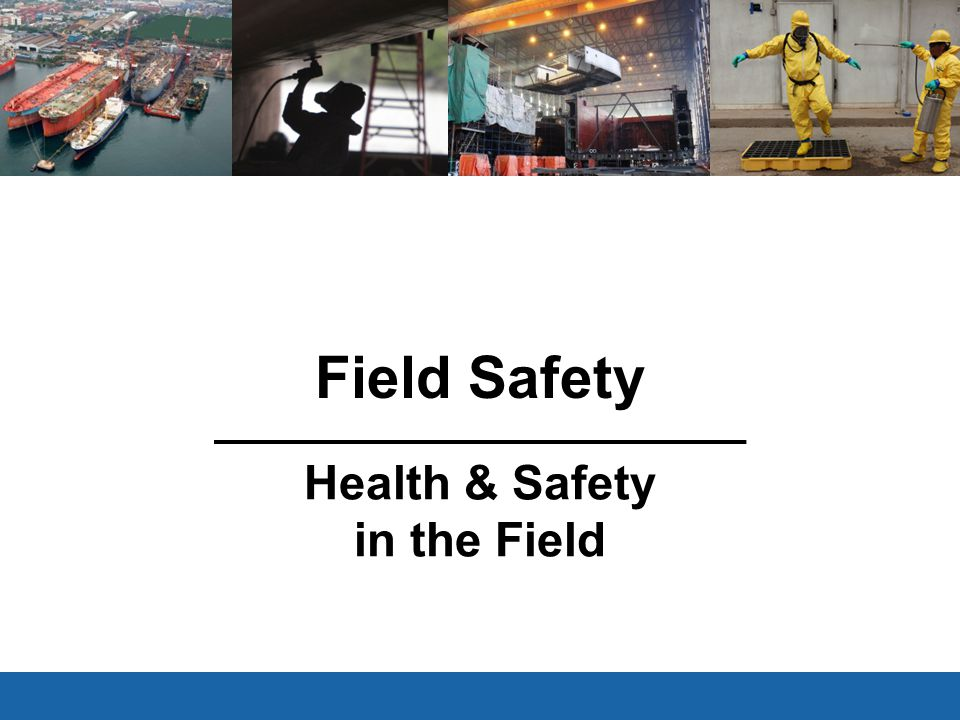 Field Safety Health & Safety in the Field V3.1 Feb 15, 2011