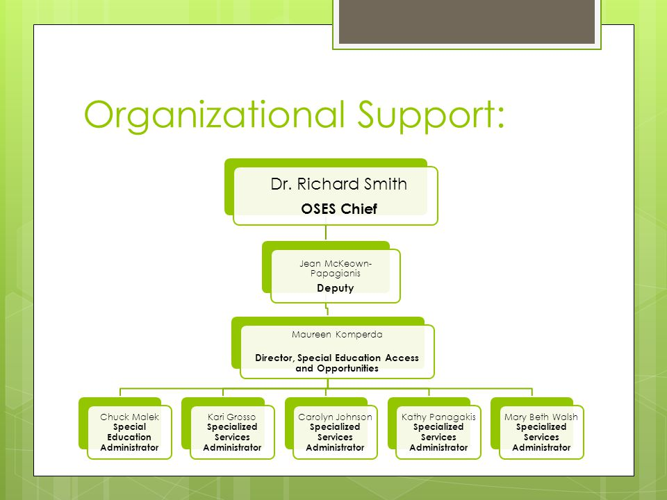 Organizational Support: Dr. Richard Smith OSES Chief Jean McKeown- Papagianis Deputy Maureen Komperda Director, Special Education Access and Opportuni