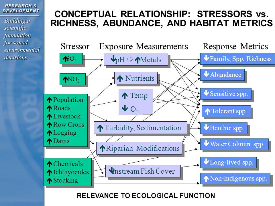CONCEPTUAL RELATIONSHIP: STRESSORS vs.