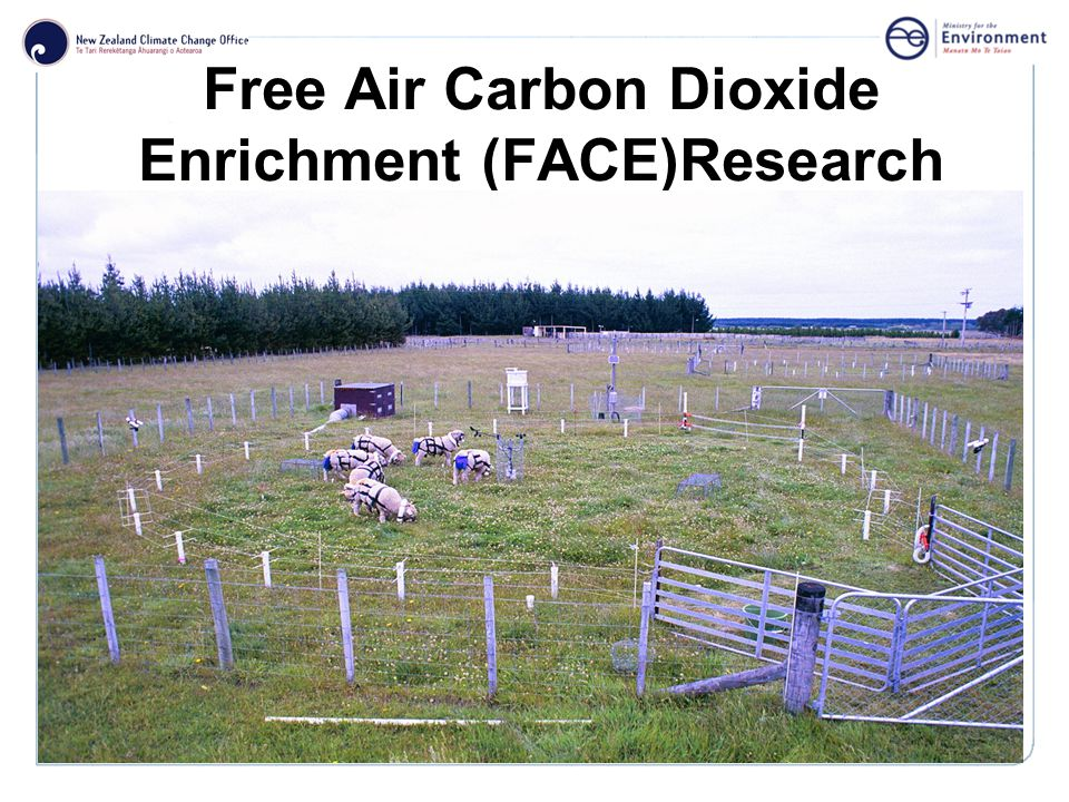 Click to edit Master title style Free Air Carbon Dioxide Enrichment (FACE)Research
