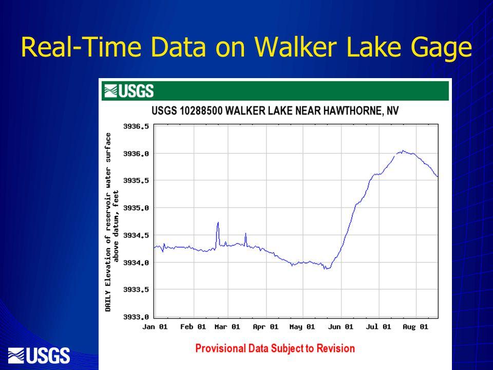 Real-Time Data on Walker Lake Gage