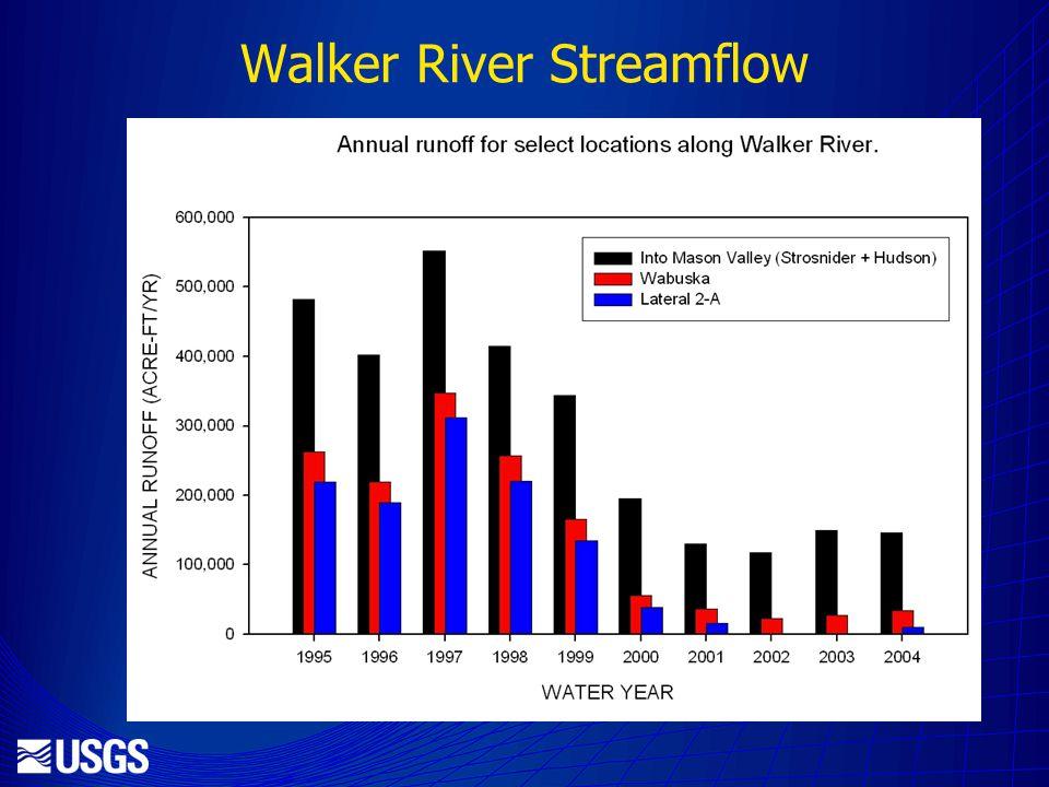 Walker River Streamflow