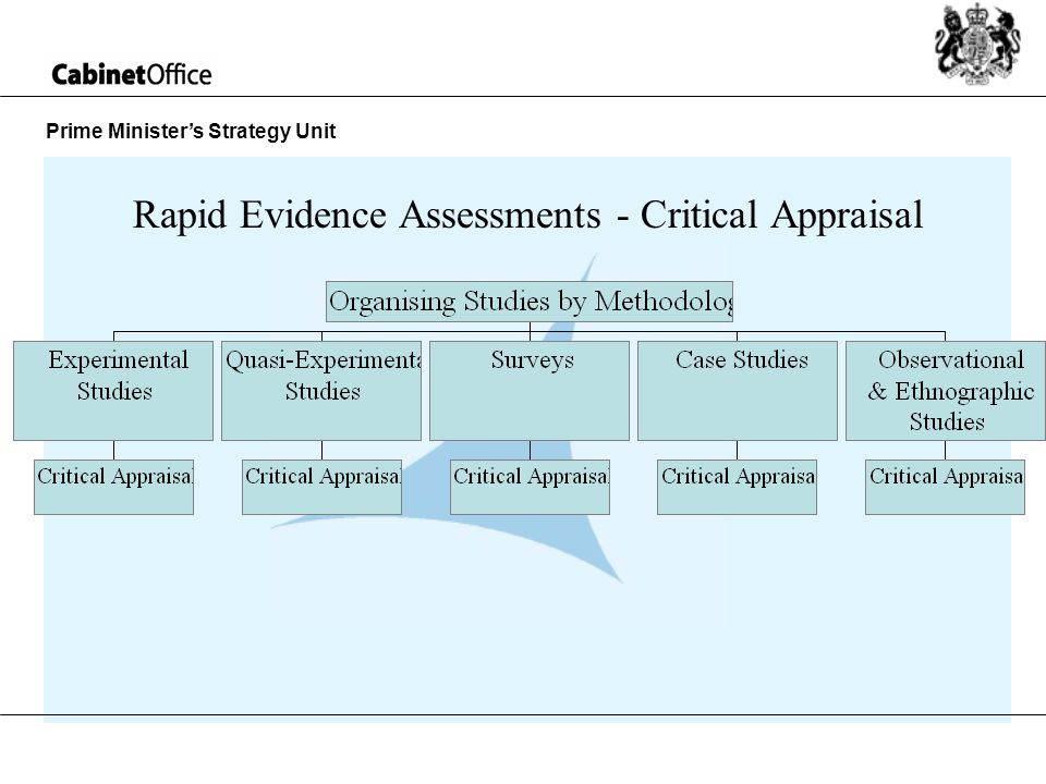Prime Ministers Strategy Unit Rapid Evidence Assessments - Critical Appraisal