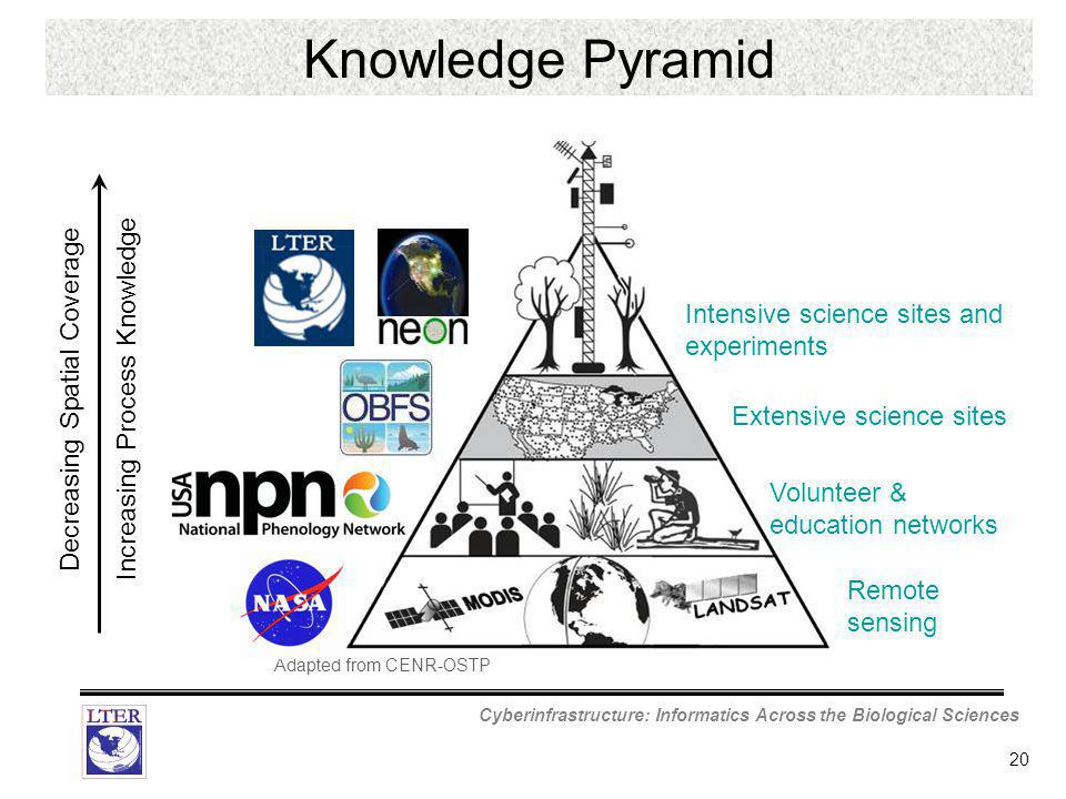 Cyberinfrastructure: Informatics Across the Biological Sciences 20 Decreasing Spatial Coverage Increasing Process Knowledge Adapted from CENR-OSTP Remote sensing Intensive science sites and experiments Extensive science sites Volunteer & education networks Knowledge Pyramid