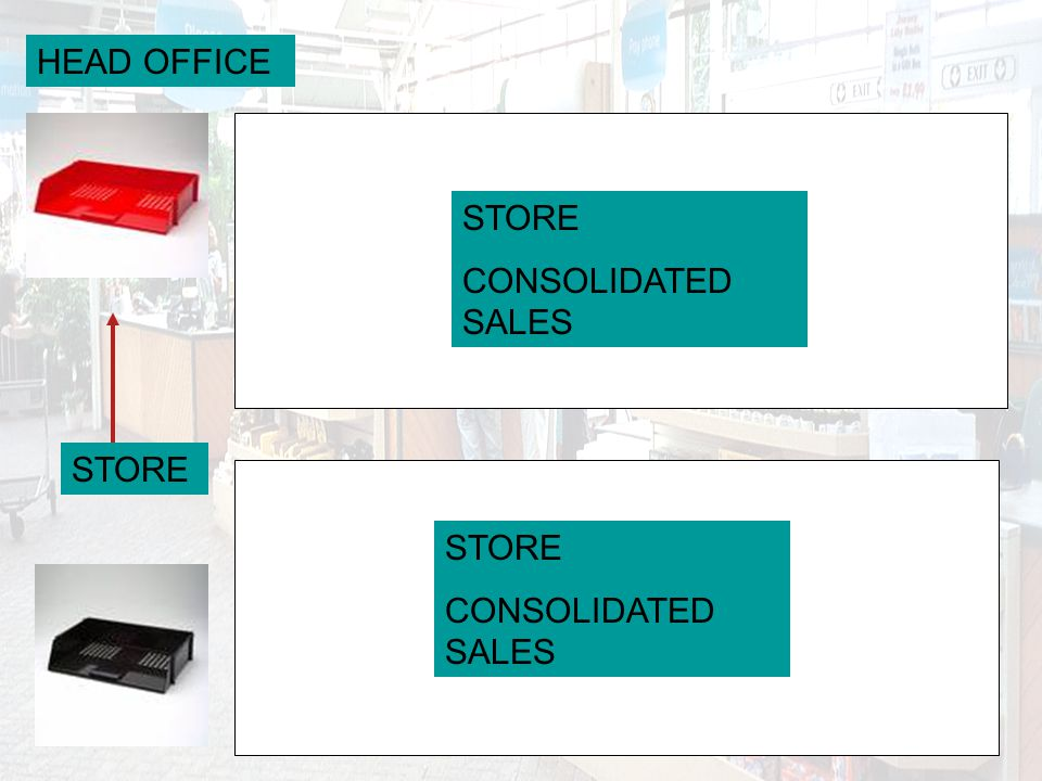 HEAD OFFICE STORE CONSOLIDATED SALES STORE CONSOLIDATED SALES