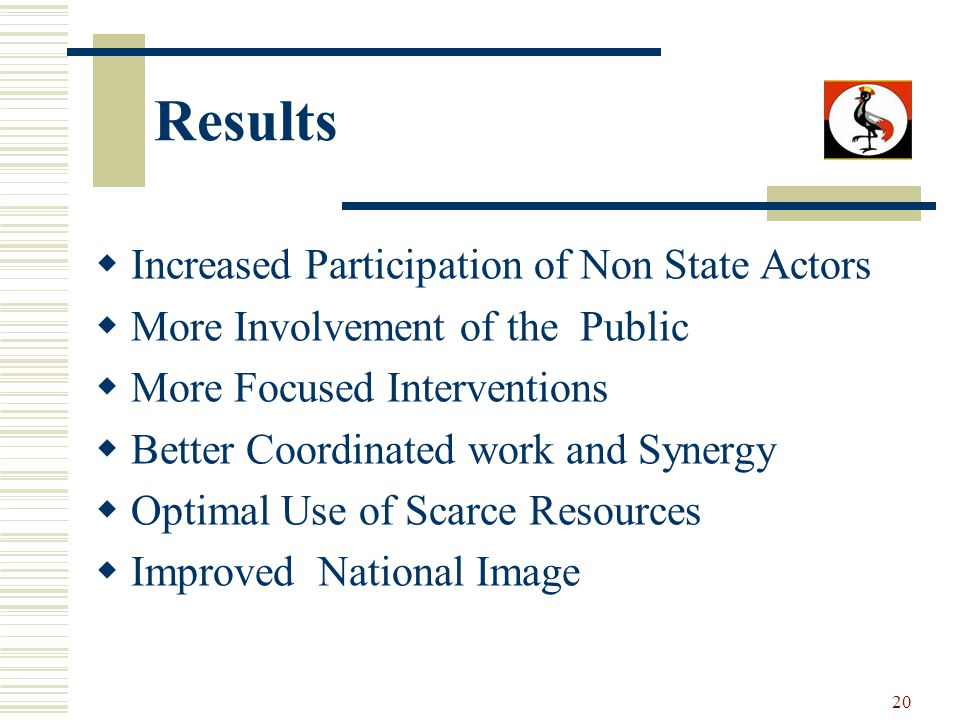 20 Results Increased Participation of Non State Actors More Involvement of the Public More Focused Interventions Better Coordinated work and Synergy Optimal Use of Scarce Resources Improved National Image