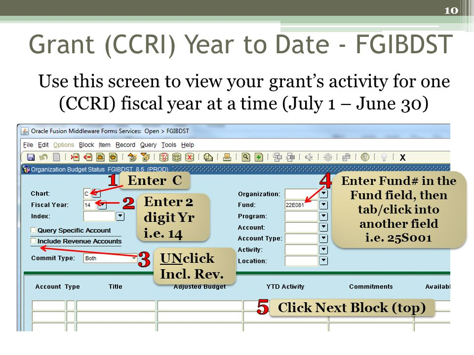 Grant (CCRI) Year to Date - FGIBDST Use this screen to view your grants activity for one (CCRI) fiscal year at a time (July 1 – June 30) 10 Enter C En