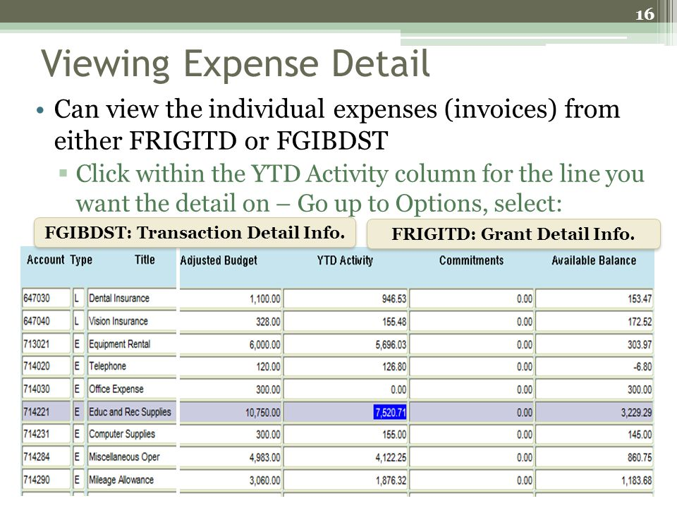 Viewing Expense Detail Can view the individual expenses (invoices) from either FRIGITD or FGIBDST Click within the YTD Activity column for the line yo