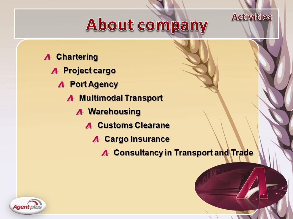Multimodal Transport Customs Clearane Warehousing Project cargo Port Agency Cargo Insurance Consultancy in Transport and Trade Chartering