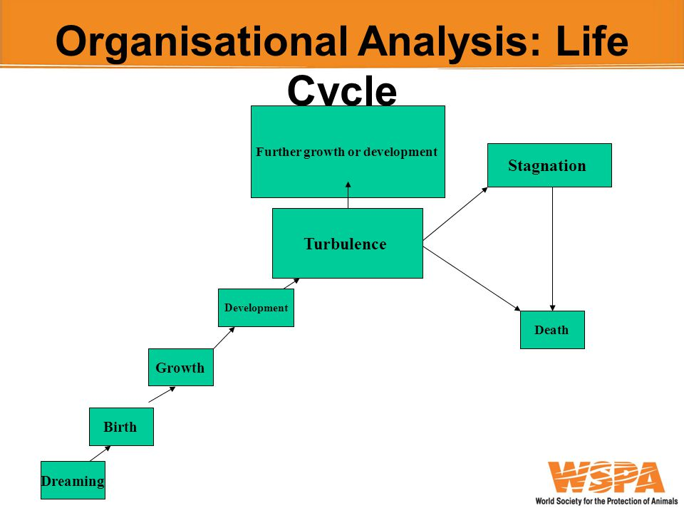 Organisational Analysis: Life Cycle Dreaming Birth Growth Development Turbulence Further growth or development Stagnation Death
