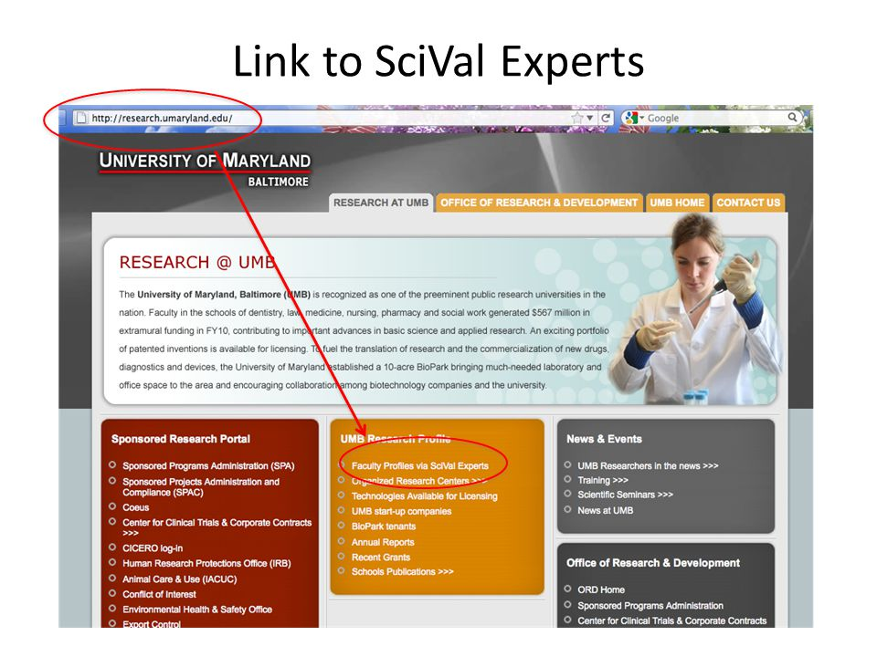 Link to SciVal Experts