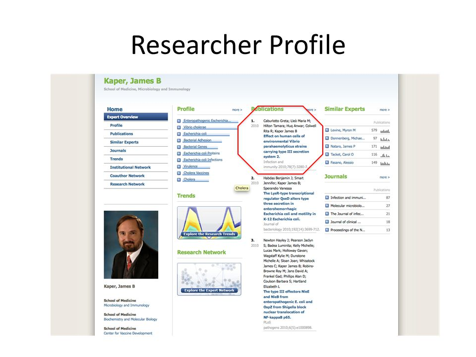 Researcher Profile