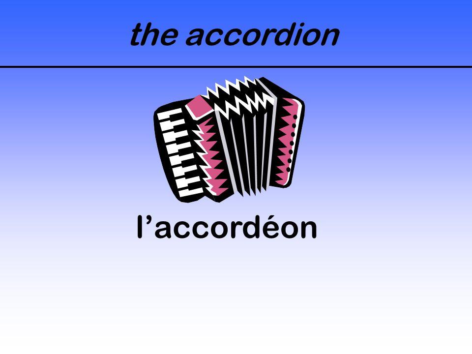 the accordion laccordéon