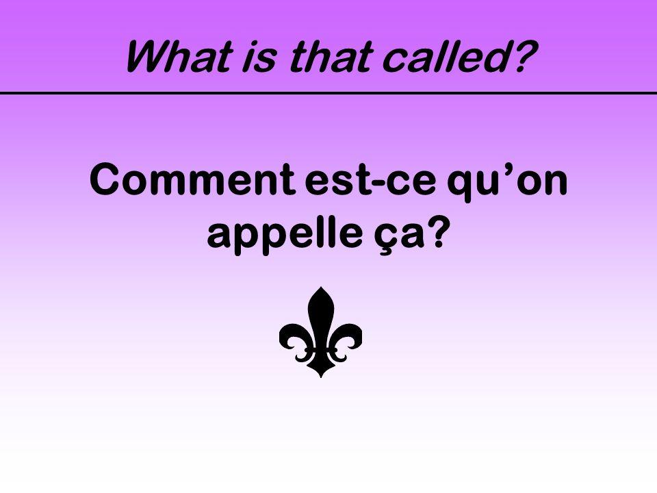 What is that called Comment est-ce quon appelle ça