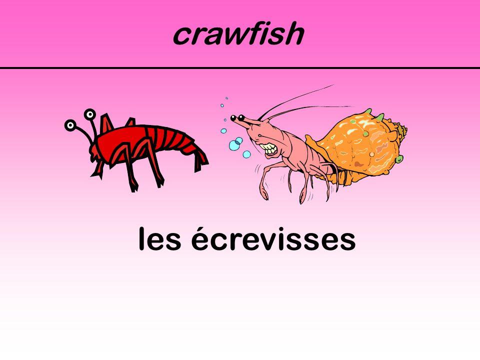 crawfish les écrevisses