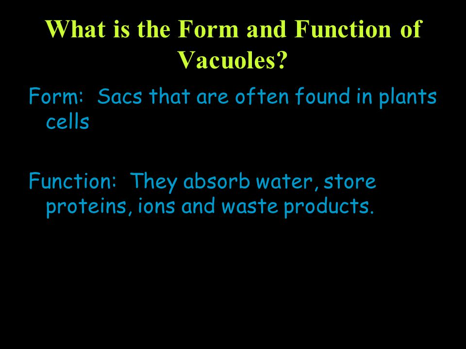 What is the Form and Function of Vacuoles? Form: Sacs that are often found in plants cells Function: They absorb water, store proteins, ions and waste