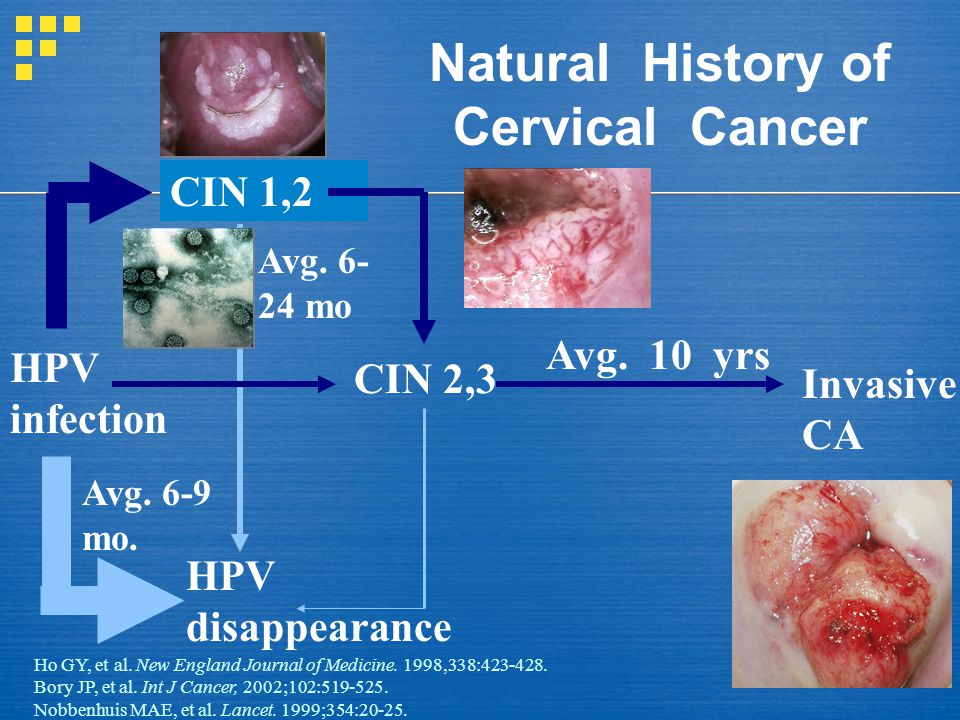 Natural History of Cervical Cancer HPV infection CIN 1,2 CIN 2,3 HPV disappearance Invasive CA Avg. 10 yrs Avg. 6- 24 mo Avg. 6-9 mo. Ho GY, et al. Ne