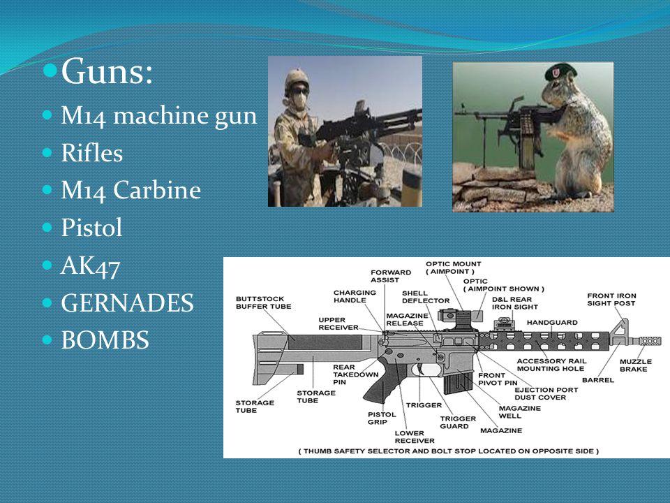 Guns: M14 machine gun Rifles M14 Carbine Pistol AK47 GERNADES BOMBS