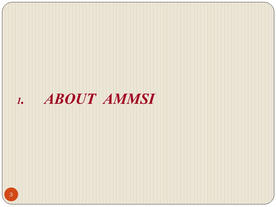 1. ABOUT AMMSI 3