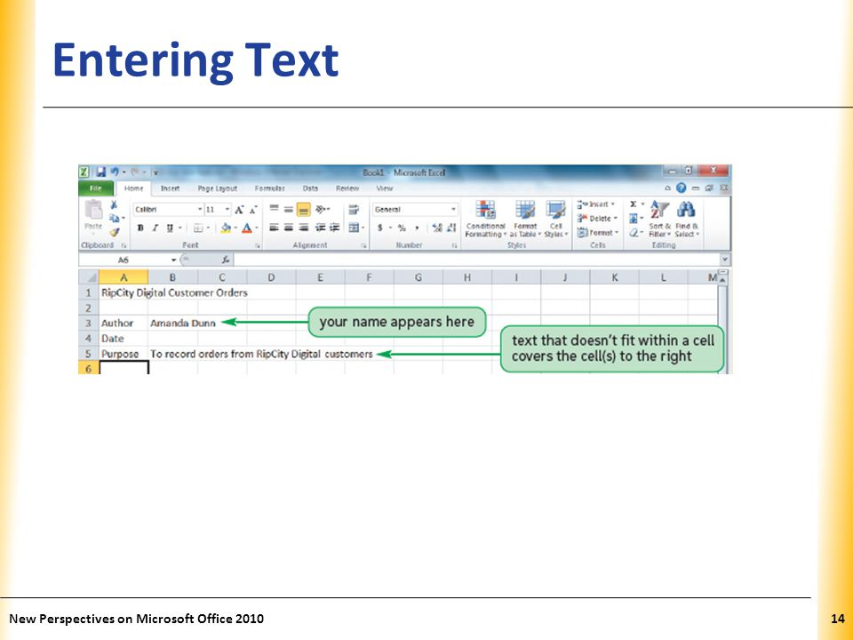 XP Entering Text New Perspectives on Microsoft Office 201014