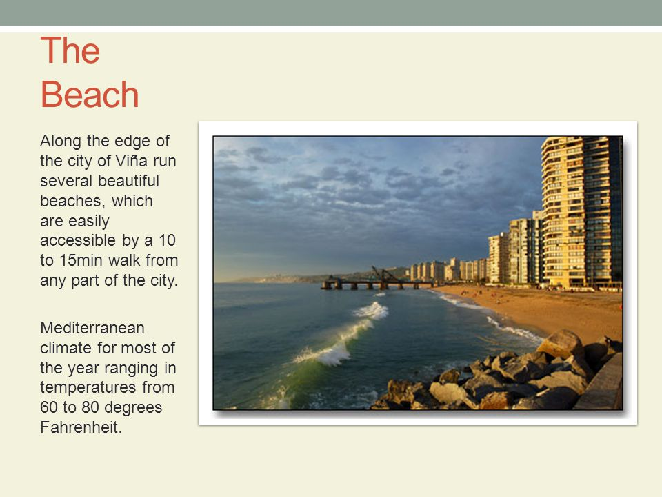 The Beach Along the edge of the city of Viña run several beautiful beaches, which are easily accessible by a 10 to 15min walk from any part of the city.