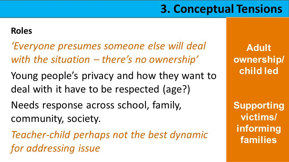 3. Conceptual Tensions Roles Everyone presumes someone else will deal with the situation – theres no ownership Young peoples privacy and how they want