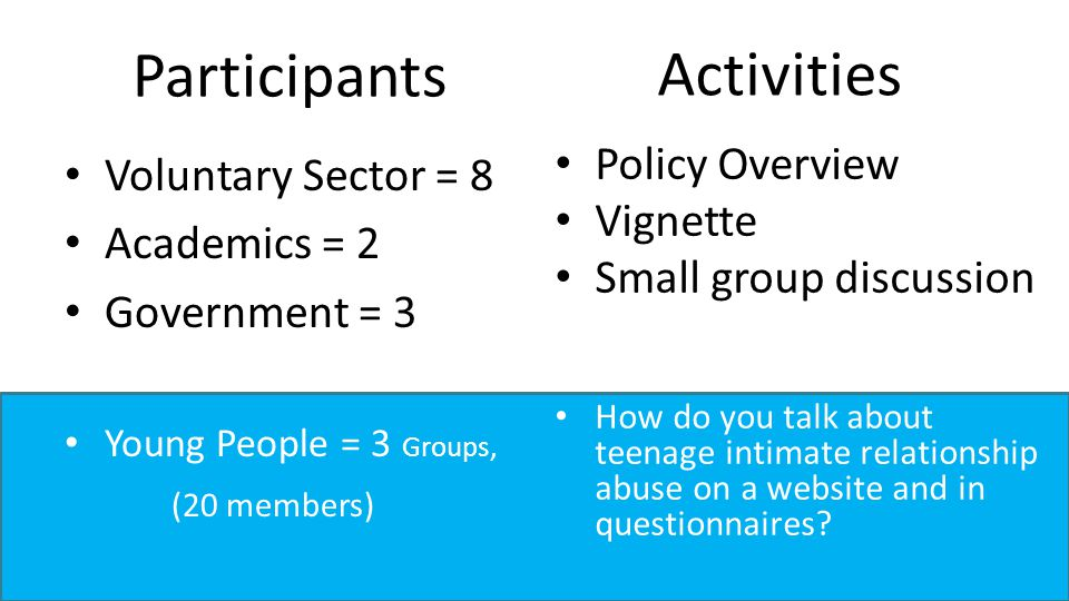 Participants Voluntary Sector = 8 Academics = 2 Government = 3 Young People = 3 Groups, (20 members) Activities Policy Overview Vignette Small group discussion How do you talk about teenage intimate relationship abuse on a website and in questionnaires