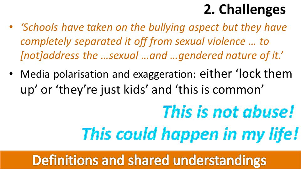 Schools have taken on the bullying aspect but they have completely separated it off from sexual violence … to [not]address the …sexual …and …gendered nature of it.