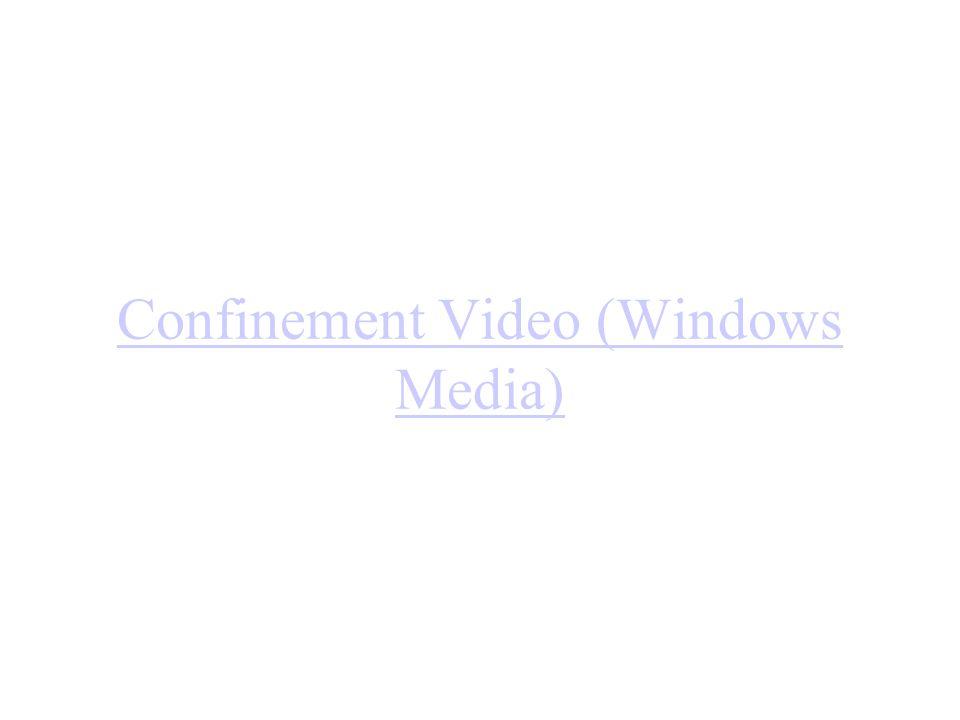 Confinement Video (Windows Media)