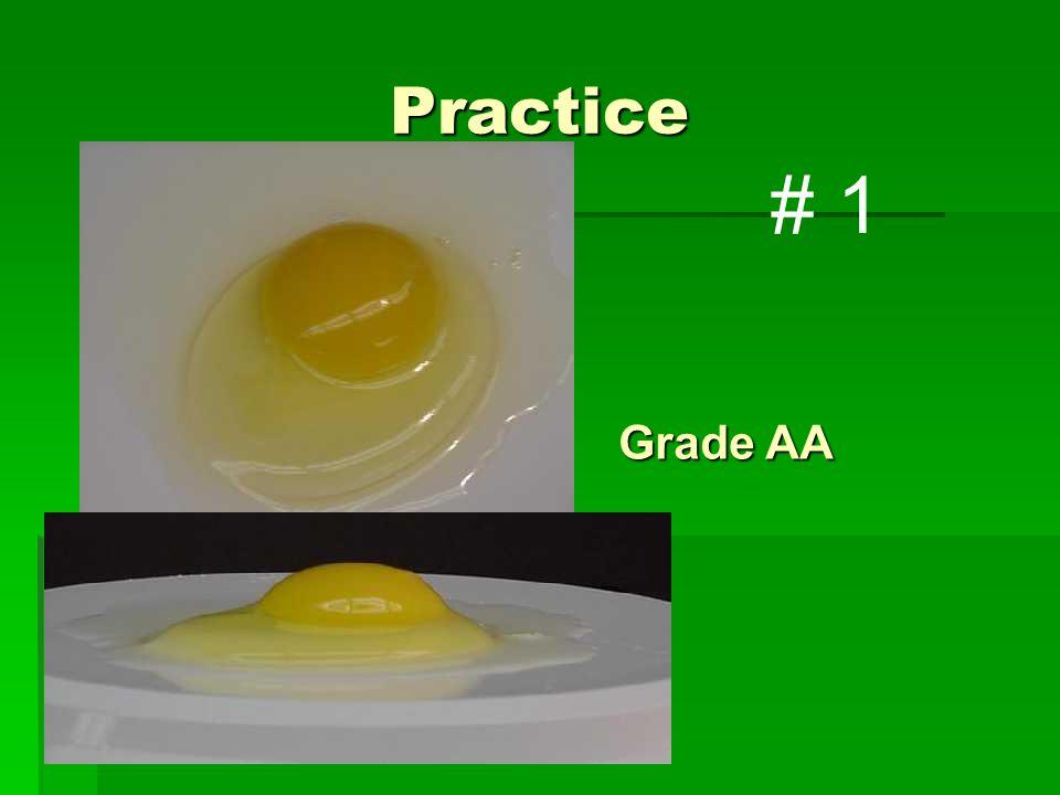 Practice Grade AA # 1