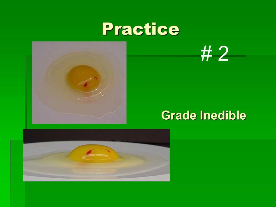 Practice Grade Inedible # 2