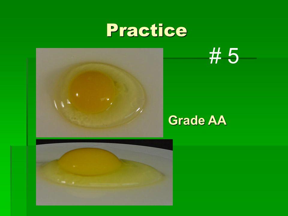 Practice Grade AA # 5