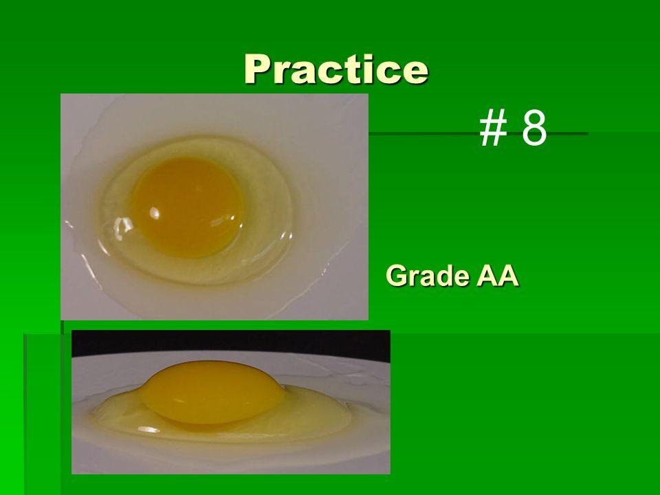 Practice Grade AA # 8