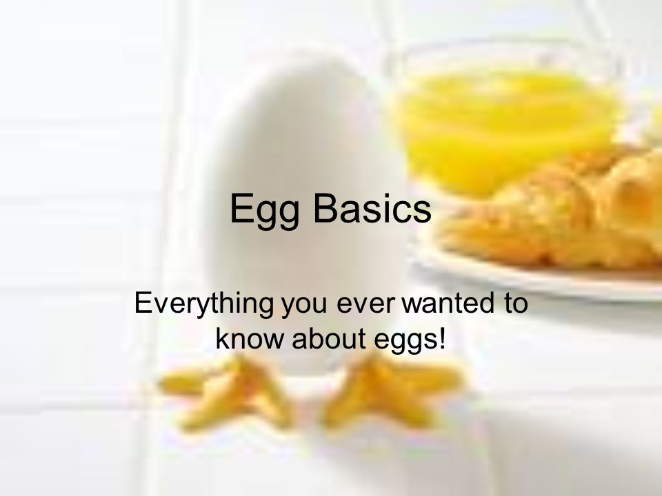 Egg Basics Everything you ever wanted to know about eggs!