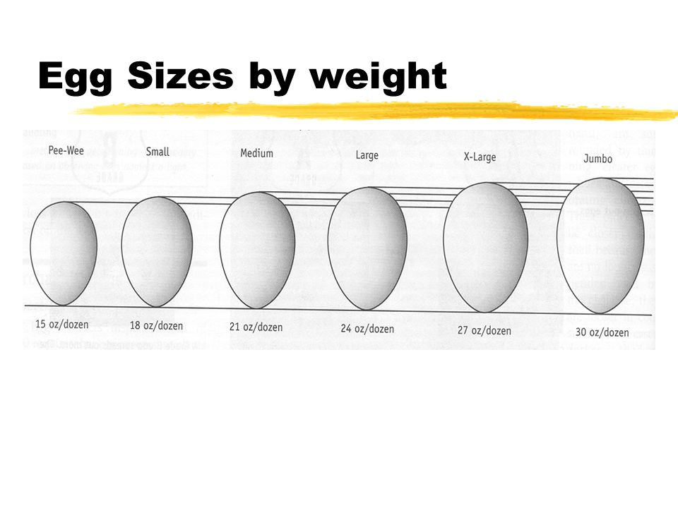 Egg Sizes by weight