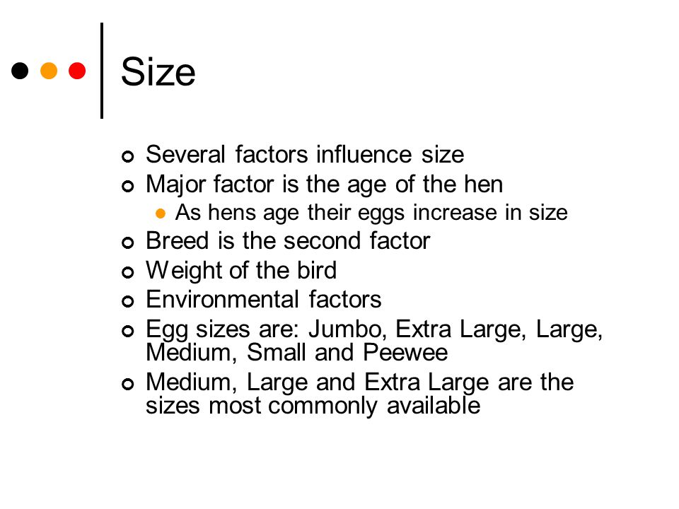 Size Several factors influence size Major factor is the age of the hen As hens age their eggs increase in size Breed is the second factor Weight of th
