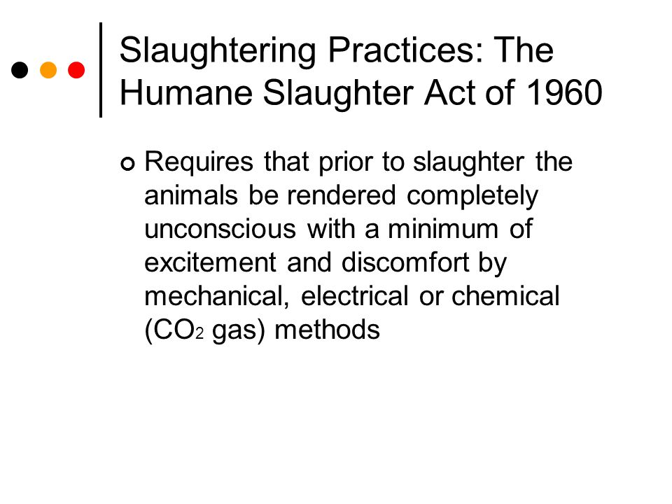 Slaughtering Practices: The Humane Slaughter Act of 1960 Requires that prior to slaughter the animals be rendered completely unconscious with a minimu