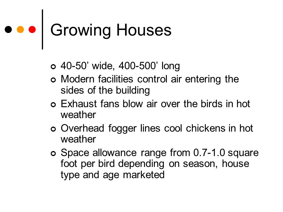 Growing Houses 40-50 wide, 400-500 long Modern facilities control air entering the sides of the building Exhaust fans blow air over the birds in hot w