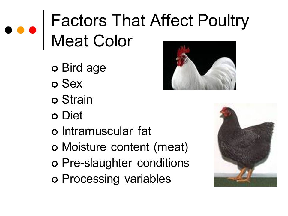 Factors That Affect Poultry Meat Color Bird age Sex Strain Diet Intramuscular fat Moisture content (meat) Pre-slaughter conditions Processing variable