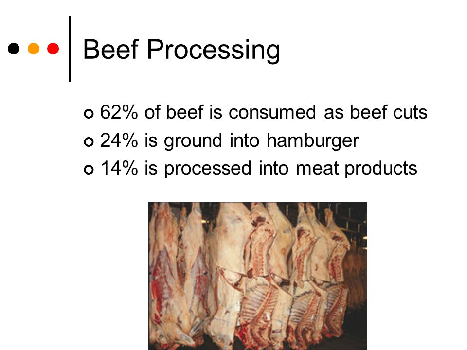 Beef Processing 62% of beef is consumed as beef cuts 24% is ground into hamburger 14% is processed into meat products