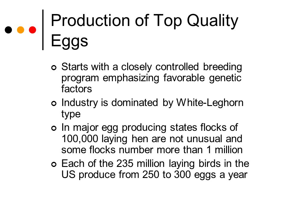 Production of Top Quality Eggs Starts with a closely controlled breeding program emphasizing favorable genetic factors Industry is dominated by White-
