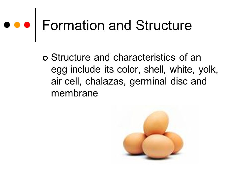 Formation and Structure Structure and characteristics of an egg include its color, shell, white, yolk, air cell, chalazas, germinal disc and membrane