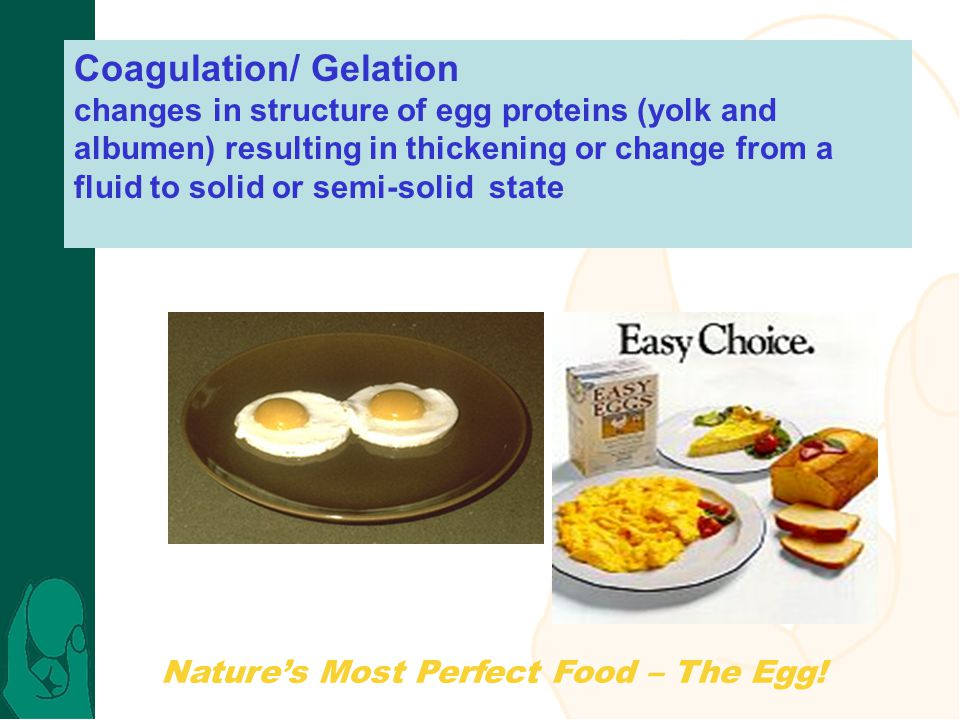 Natures Most Perfect Food – The Egg! Coagulation/ Gelation changes in structure of egg proteins (yolk and albumen) resulting in thickening or change f