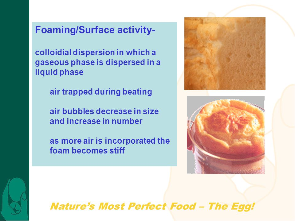 Natures Most Perfect Food – The Egg! Foaming/Surface activity- colloidial dispersion in which a gaseous phase is dispersed in a liquid phase air trapp