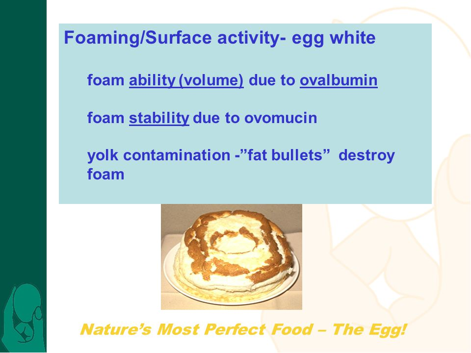 Natures Most Perfect Food – The Egg! Foaming/Surface activity- egg white foam ability (volume) due to ovalbumin foam stability due to ovomucin yolk co